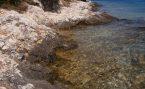 Plaža Punta od biskupa